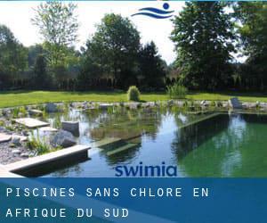 traitement piscine sans chlore